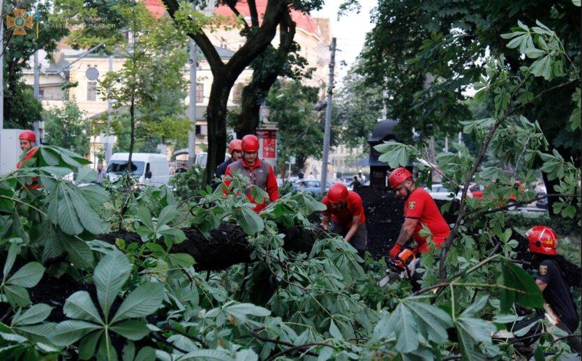 На Киев, Днепр и Харьков надвигаются грозы с градом, а Львов, Закарпатье и Одессу ждет жара +30