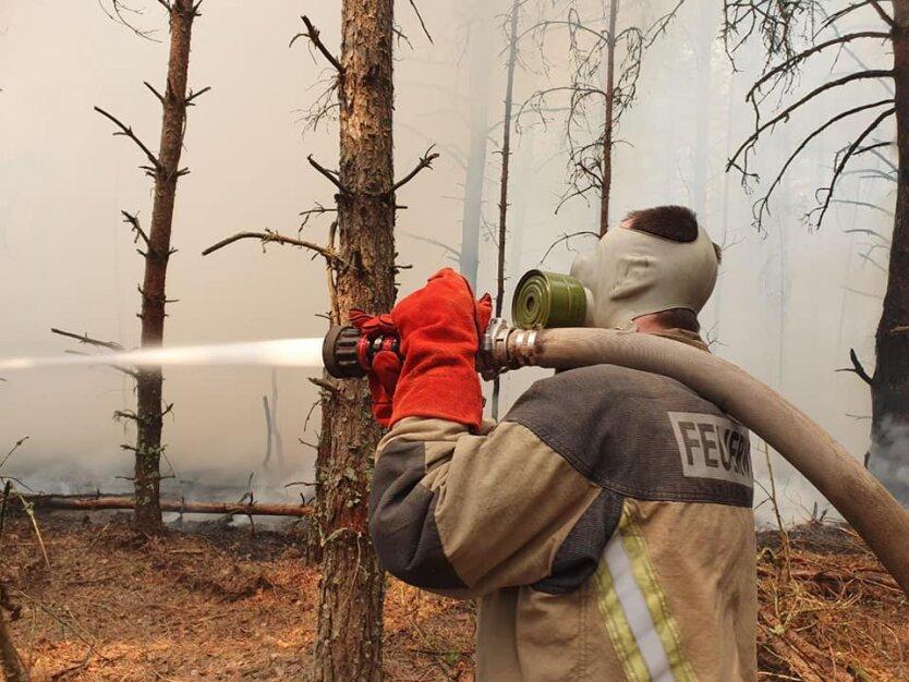 Тушение пожара в Чернобыльской зоне отчуждения , пожары в Украине
