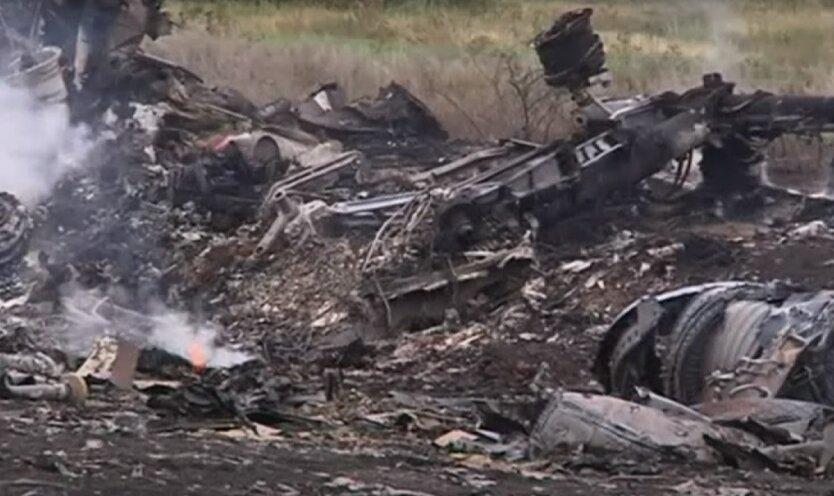 Расследование крушения рейса МН17,Всеволод Ченцов,Европейский суд по правам человека