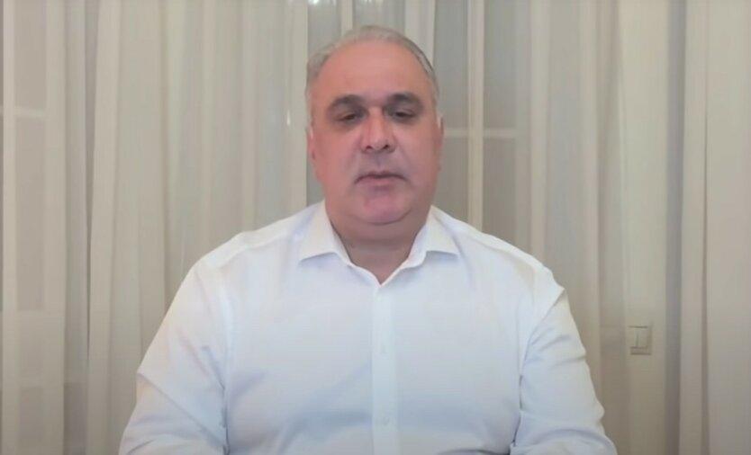 Жвания вернулся в Киев, чтобы добиться наказания Порошенко и рассказать о Гиркине