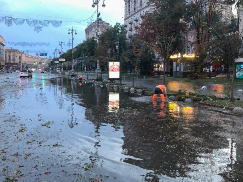Спасение собаки во время потопа в Киеве стало хитом соцсетей: видео