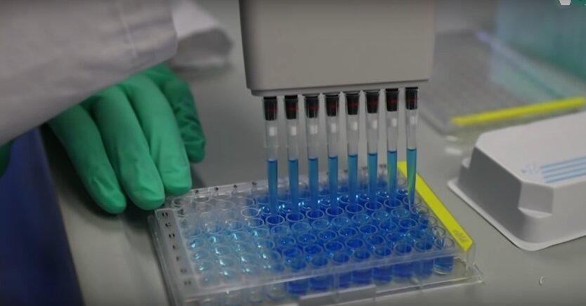 коронавирус, тест на коронавирус, коронавирус-тест