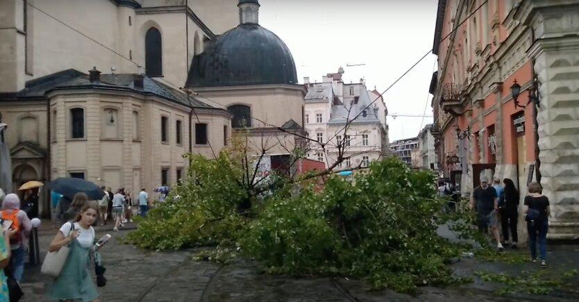 Киев накрыла рекордная жара, а во Львов и Ровно пришел водный апокалипсис: видео