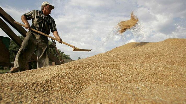 зерно аграрии урожай элеватор