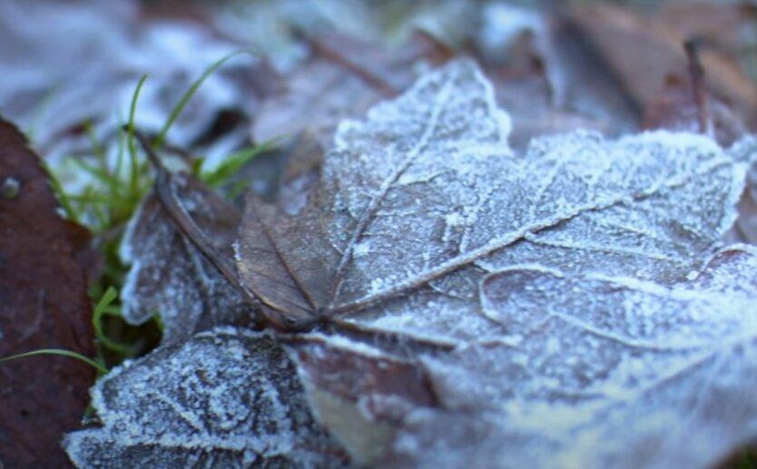 Синоптик дала прогноз погоды на начало недели