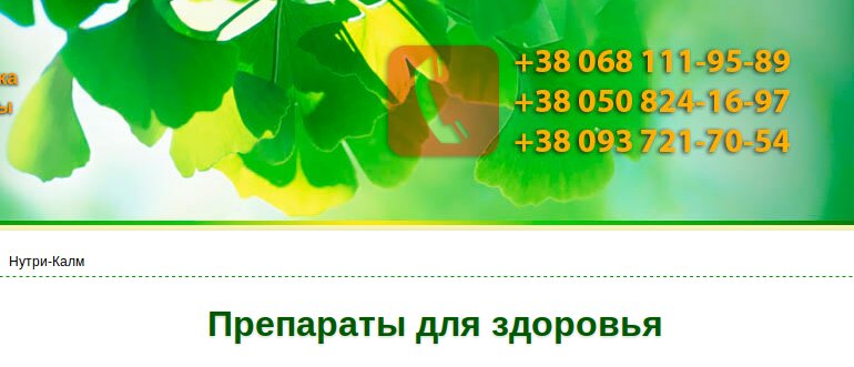 Screenshot_2019-07-06 Бады NSP купить, полный каталог на бады НСП от А до Я с ценами