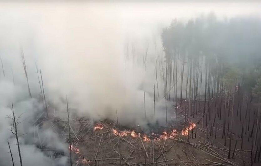 Пожар в Чернобыльской зоне не могут потушить