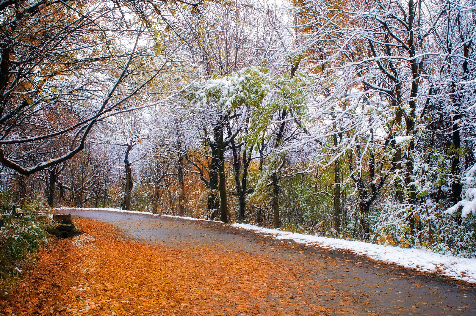 вам осенний пейзаж со снегом фото затовариваемся всем необходимым